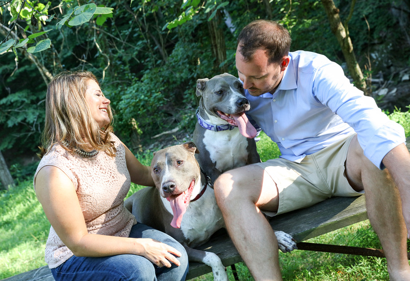 Family photography: a man and woman laugh as they sit on a picnic table in the woods with their two pit bulls.