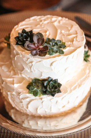 Wedding photography, a white wedding cake with succulent plants on it.