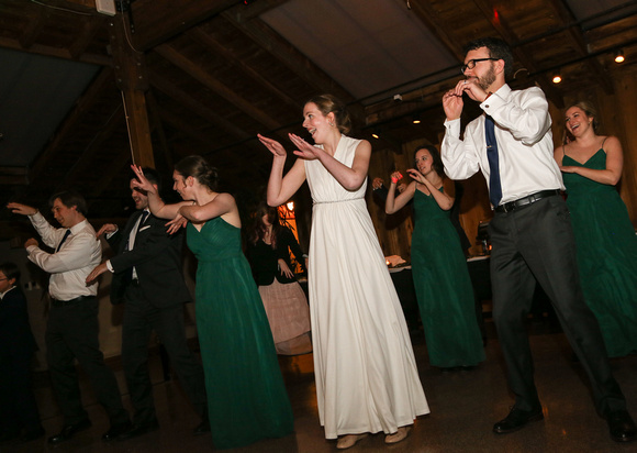 Wedding photography, the wedding party is dancing.