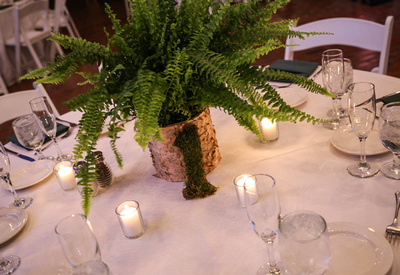 Wedding photography, a table with a white cloth, candles, and a fern centerpiece.