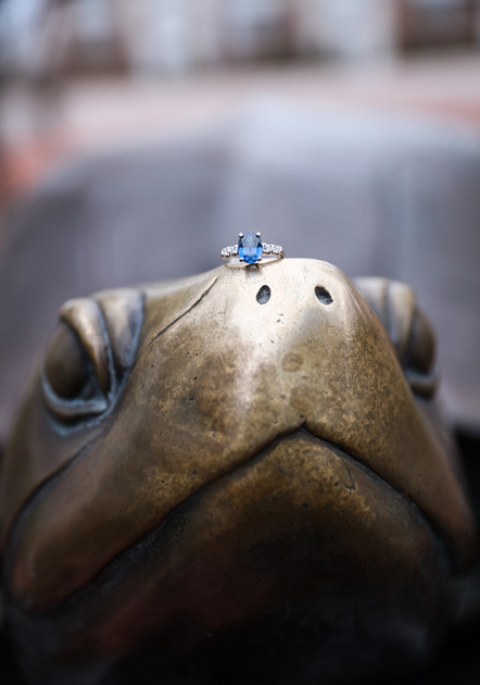 Engagement photography, an engagement ring with a blue stone sits on top of a statue of a terrapin.