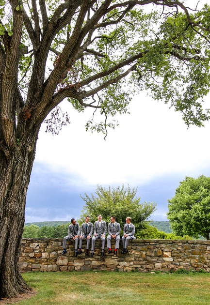 Wedding photography, a groom and his groomsmen sit on a stone wall underneath a large tree.