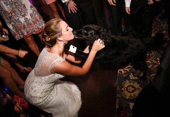 Wedding photography, a bride in an embroidered gown kisses her black dog on the dance floor.