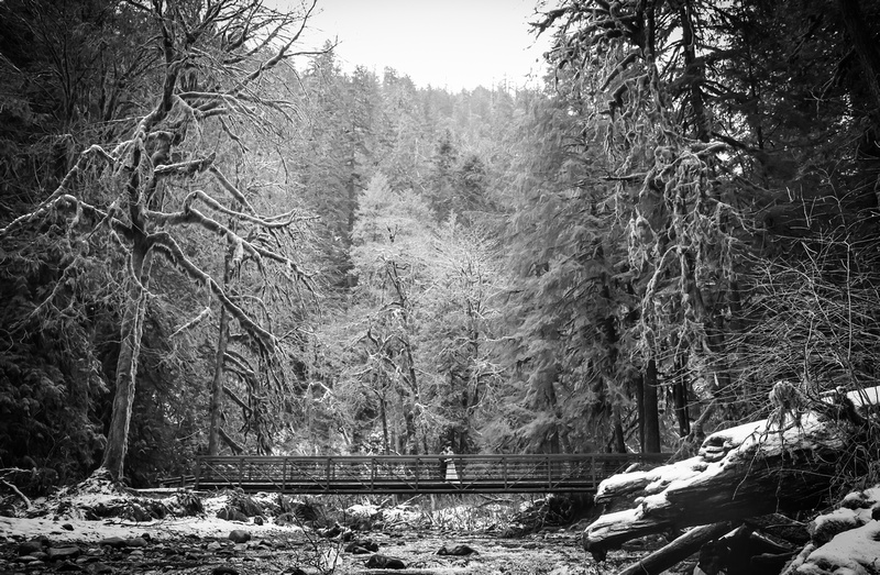 Wedding photography, a bride and groom stand on a snowy bridge in the forest.